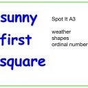 Spot it A-3 weather shape 1stのサムネイル